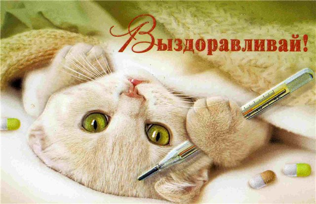 http://www.detkityumen.ru/media/forum/1081826470.jpg